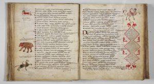"""Il manoscritto medievale delle """"Metamorfosi"""" di Ovidio\ ilmondodisuk.com"""