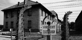 auschwitz| ilmondodosuk.com