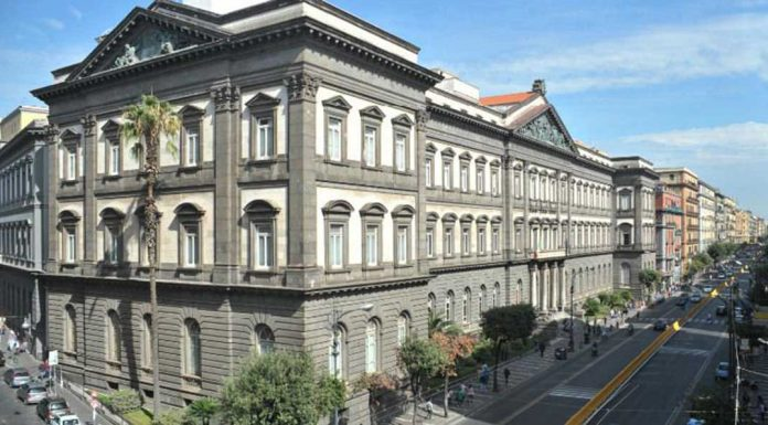 Università Federico II| ilmondodisuk.com
