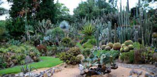 orto botanico di Napoli | ilmonddoisuk.com