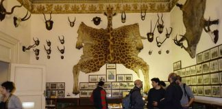 biblioteca nazionale di napoli| ilmondodisuk.com