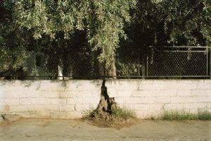 Qui sopra, un'immagine di Cristina Cusani. In alto, una foto di Chiara