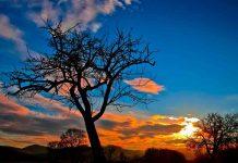 il tramonto della vita| ilmondodisuk.com