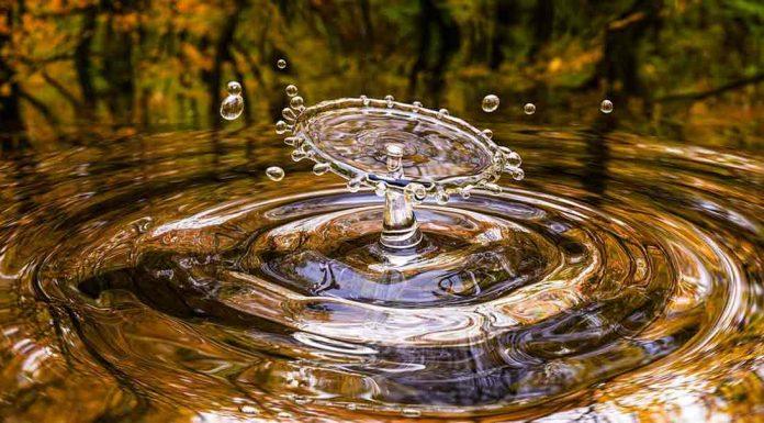 acqua| ilmondodisuk.com