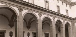 biblioteca universitarai| ilmondodisuk.com