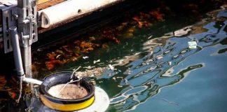 il cestino del mare| ilmondodisuk.com