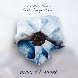 Qui sopra, la coeprtina del singolo di Aniello Misto. In alto, in cantautore napoletano