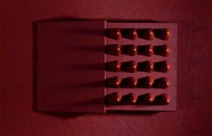 Qui sopea, unma delle opere di Roberta Pugno dedicate a Giordano Bruno. In alto, Michele Ciliberto