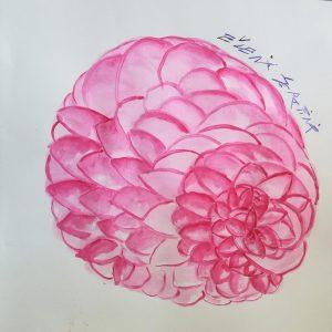 Qui sopra, il fiore di Eugenia. In alto, un selfie dell'autrice